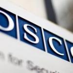 Москва поднимет тему «лесных братьев» в ОБСЕ